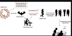 Diagram Process of transmitting the disease