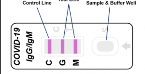 Lateral Flow Assay COVID-19 Test Kits Reviewed