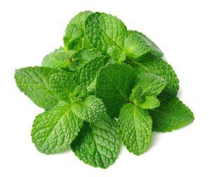 Mint Fragrance Sanitiser COVID-19